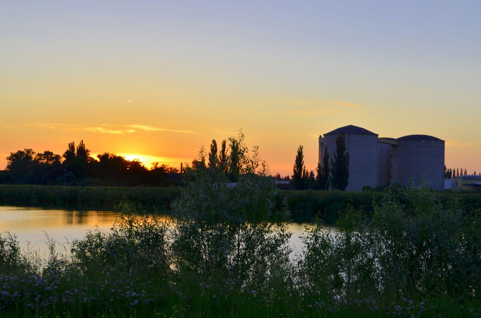 Abendsonne,  Foto: Auring