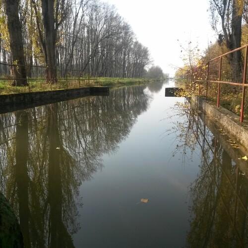 Im Reinwasserkanal ist es auch ruhig. Foto: Auring