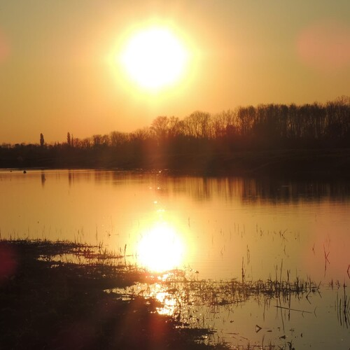 Sonnenaufgang an den vogel.schau.plätzen, Foto: U.Nüsken